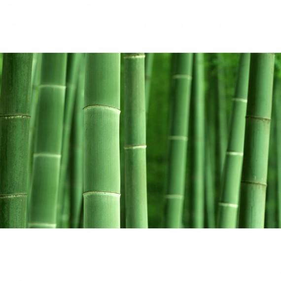 Протектор за матрак Premium Bamboo - VELFONT 3