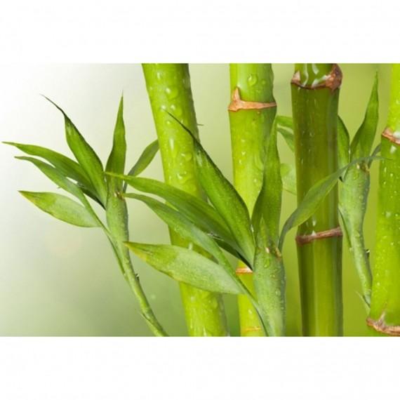 ЧИСТО НОВ НЕИЗПОЛЗВАН Матрак Vitafoam Бамбук 12, 18 см еднолицев - СИМЕОНОВ (Sf) 3